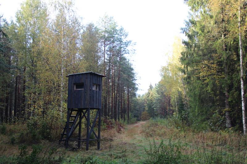 Jaunais medību tornis.